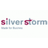 Silver Storm Solutions
