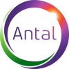 Antal International - Executive Recruitment