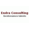 Endra Consulting