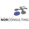 Grupo Norconsulting